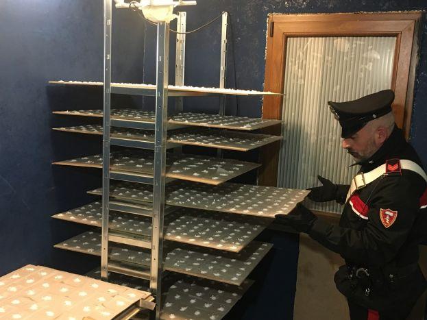 FRASCATI - Il laboratorio della droga scoperto dai Carabinieri (1)