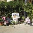 incidente-tor-san-lorenzo-investito