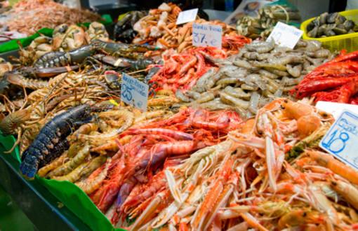 mafia al mercato del pesce di latina e cisterna