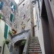 borgo medievale nettuno