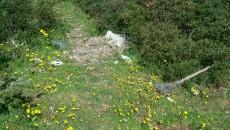 pulizia spiaggia tor san lorenzo (6)