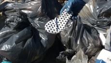 pulizia spiaggia tor san lorenzo (7)