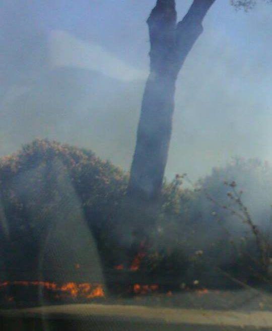 Pontina ancora chiusa dopo incendio che ha bruciato 10 ettari di campi