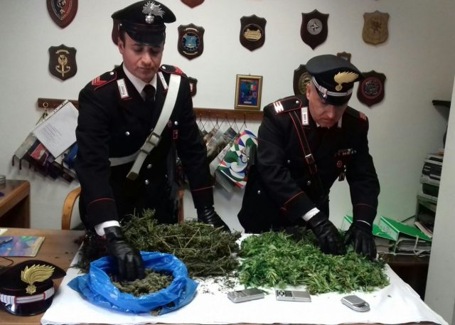 Ostia arrestata coppia 39 stupefacente 39 coltivava for Interno 1 ostia