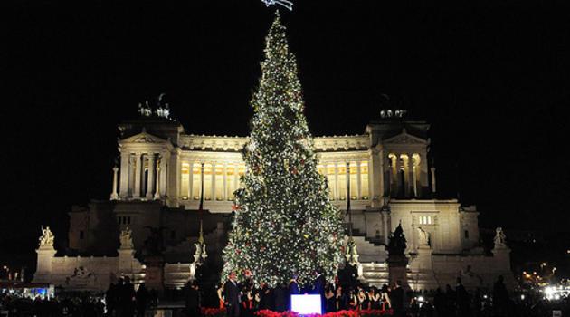 Albero Di Natale Roma 2019.Roma In Arrivo Un Albero Di Natale Alto 20 Metri Al Posto Di Spelacchio