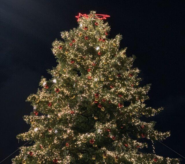 Albero Di Natale Roma 2020.Roma Natale 2020 L Albero Cambia Sede La Tradizione Di Spelacchio Si Sposta In Piazza Del Popolo