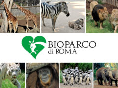 Zoo Roma Bioparco