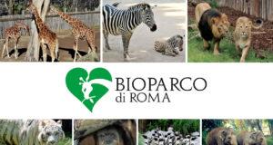 Zoo Roma Bioparco