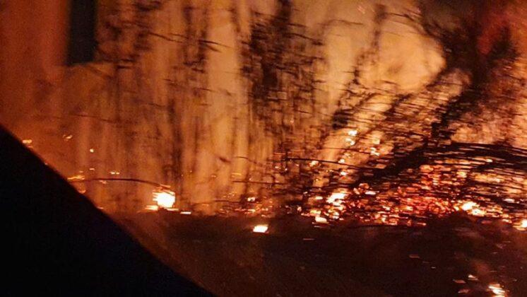 Aprilia, nuovo rogo a pochi metri dalla Loas: a fuoco l'area circostante lo stabilimento (FOTO)