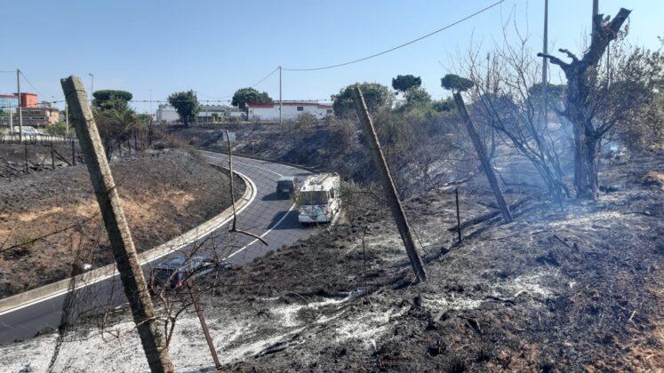 Inferno Pontina: incendio ancora attivo dopo ore, la situazione (FOTO)