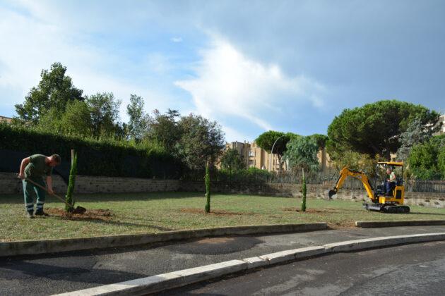 Pomezia, gli studenti del Liceo Pascal donano 3 alberi: piantati nell'area verde di via Mazzini
