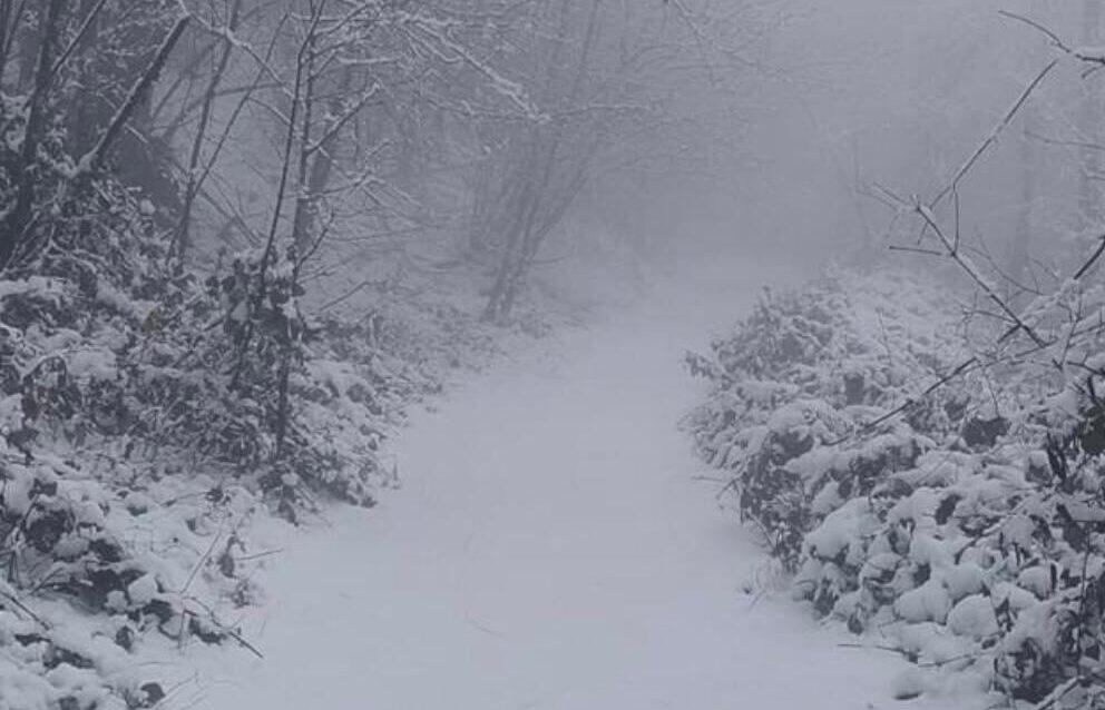 neve a Rocca di Papa