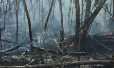 incendio via di casal monastero