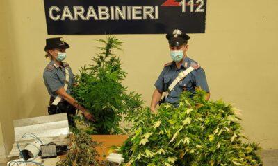 Arrestato 34enne di Frascati a Torvaianica